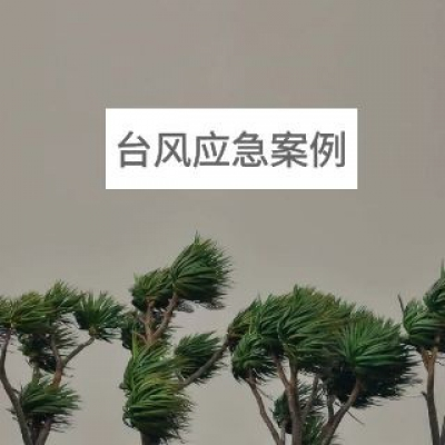 """""""莎莉嘉""""及""""海马""""双台风灾害应急案例"""